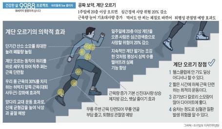 크기변환_계단오르기 효과.jpg